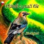 Přátelé z ptačí říše - náhled